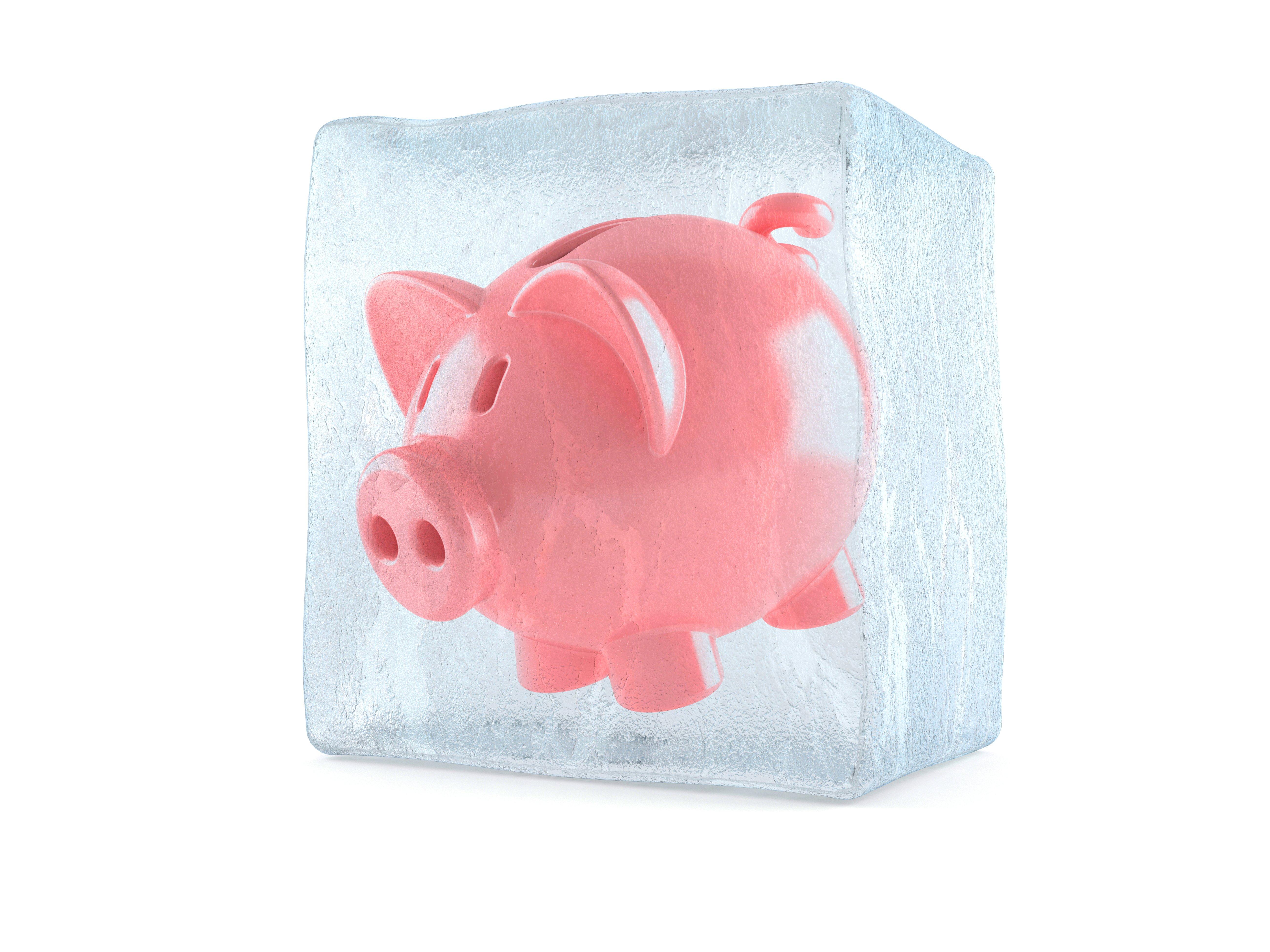Piggy bank inside ice cube