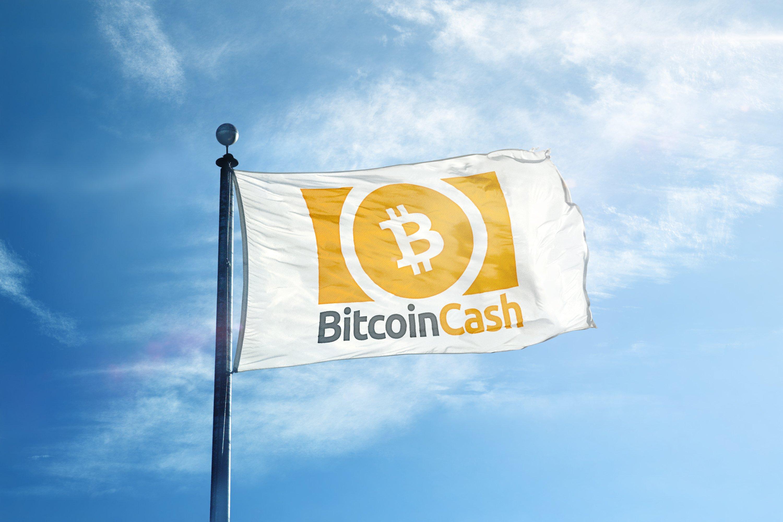 Bitcoin Cash Logo Flag