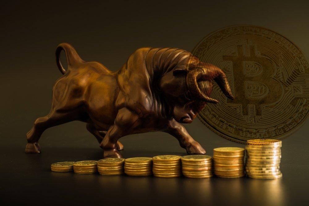bitcoin bull concept